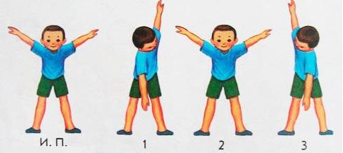 Упражнений детской зарядки в картинках