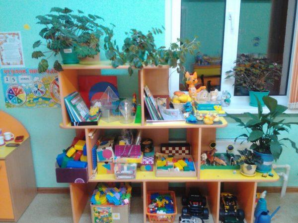 Стеллаж с материалами для игр и комнатными растениями