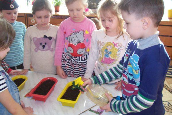 Мальчик поливает почву в специальных горшочках, дети наблюдают