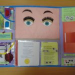 Лэпбук «Глаза и зрение»