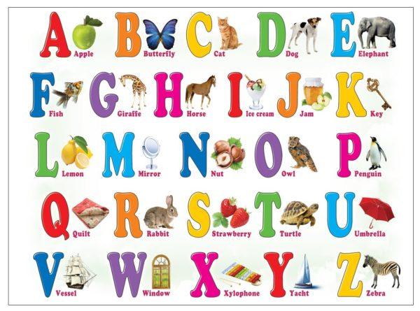 Английский алфавит с картинкой на каждую букву