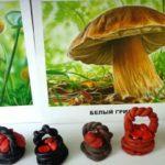 Лукошки с грибами