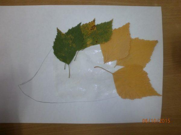 Силуэт ёжика заполняется листьями — от краёв к середине