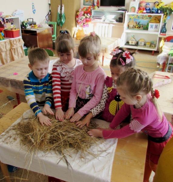 Дети трогают ладошками сухое сено, разложенное на белой ткани