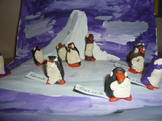 Пингвины на льдине