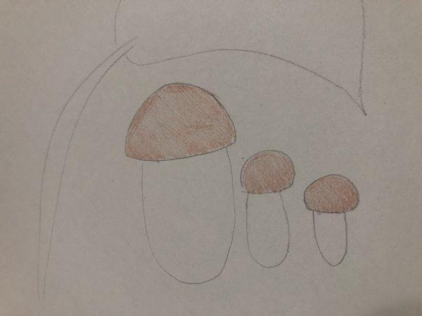 «Семейка грибов», этап 3