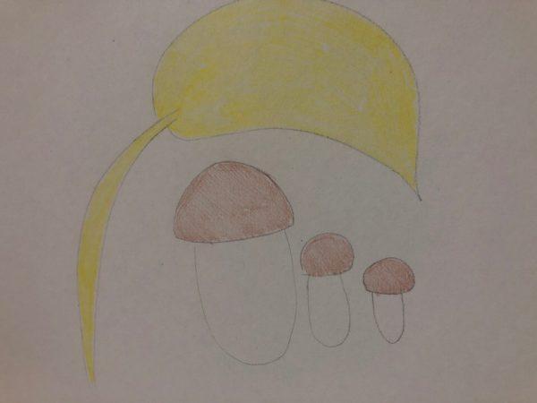 «Семейка грибов», этап 4