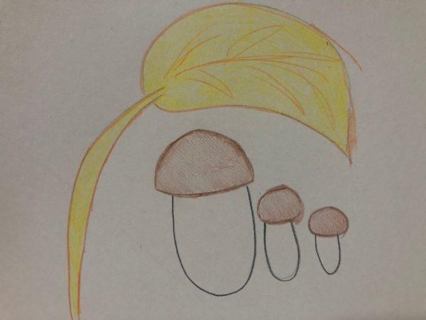 «Семейка грибов», этап 5