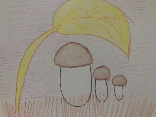 «Семейка грибов», этап 6