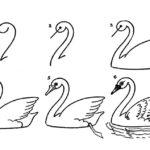 Схема лебедя
