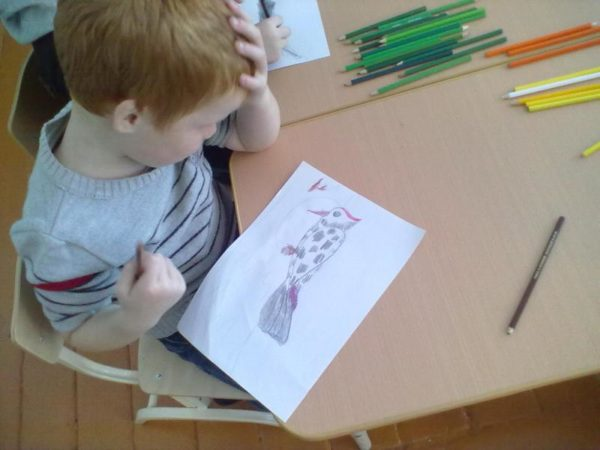 Мальчик нарисовал дятла