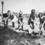Дети копают землю в поле