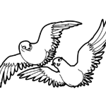 Пара голубей парят в небе
