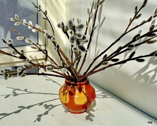 Веточки вербы в вазе