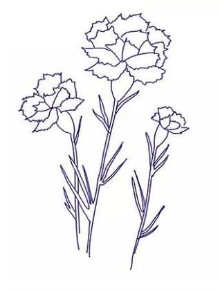 Гвоздики со стеблями и листочками
