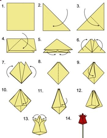 Схема выполнения тюльпана из бумаги