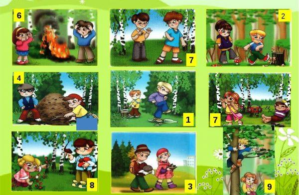 Картинки с правилами поведения в лесу