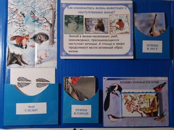 Створка с информацией о животных, птицах