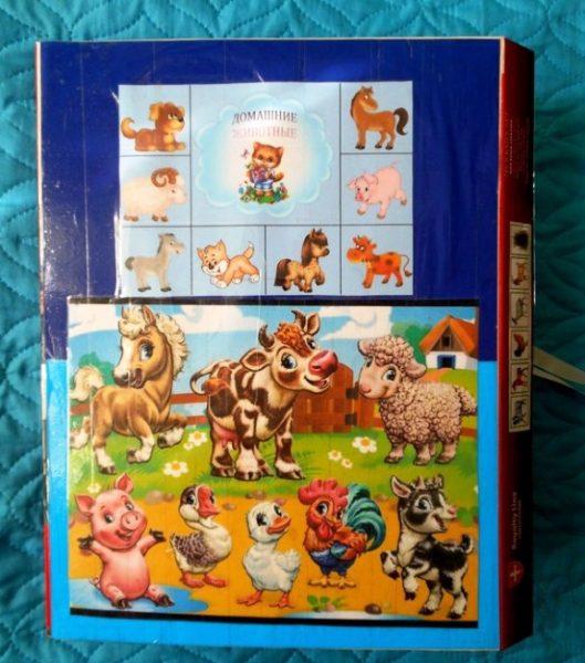 Лэпбук Домашние животные из папки для файлов
