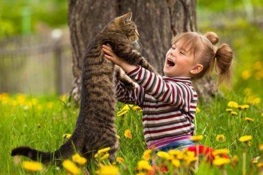 девочка поднимает кота