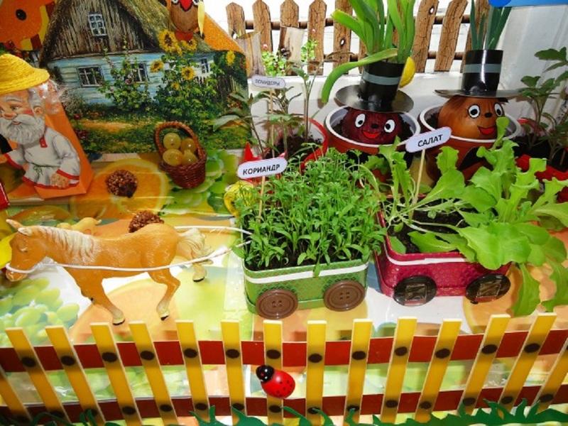 Материал по теме «Огород на подоконнике» можно собрать и интересно оформить в виде лэпбука.