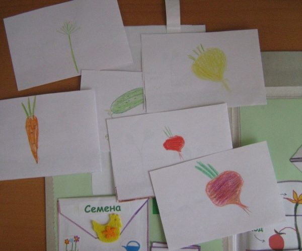Карточки «Овощи»: детские рисунки