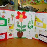 Лэпбук с красным цветком в центре