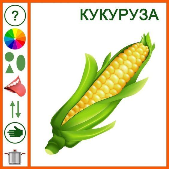 Игра «Опиши овощ» (карточка с изображение кукурузы)