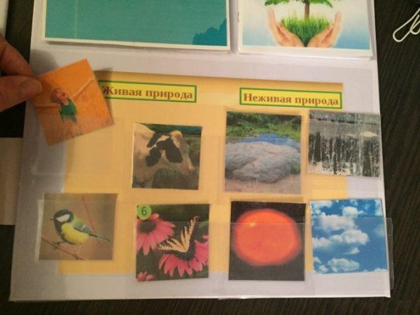 Карточки «Живая природа» и «Неживая природа»
