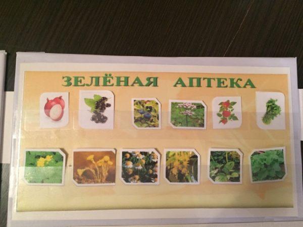 Панно «Зелёная аптека»