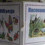 Папка с лэпбуком Мир насекомых