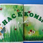Закрытый лэпбук Насекомые с ромашками и бабочками