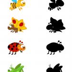 Картинка с насекомыми для игры Найди тень