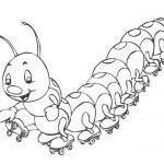 Шаблон раскраски Гусеница