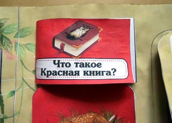 Информация о том, что такое «Красная книга»