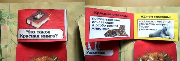 Мини-книжка «Что такое Красная книга»