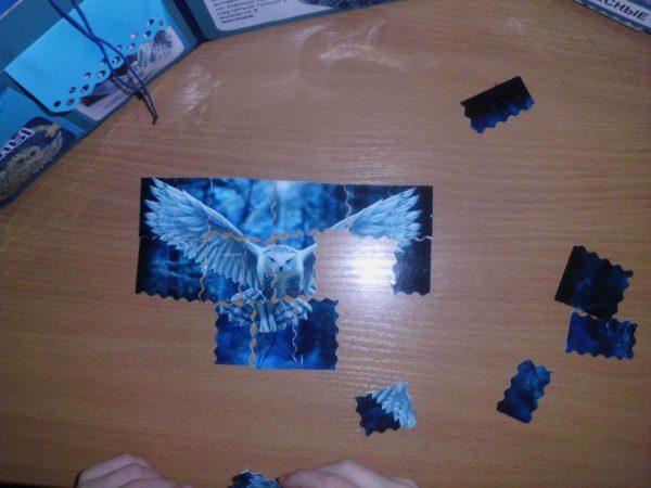 Ребёнок собирает на столе пазлы «Полярная сова»