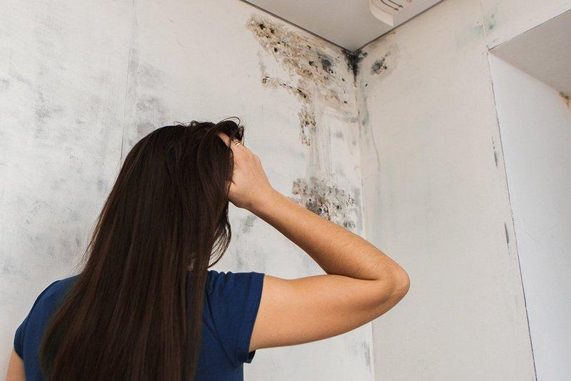 Плесень в доме представляет серьёзную угрозу здоровью, а не просто порти внешний вид жилища.