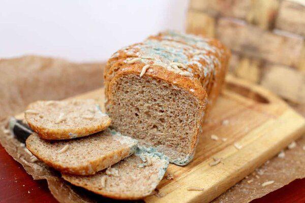 Зелёная плесень на хлебе