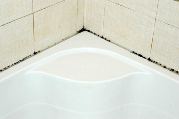 Плесень на швах между плиткой и ванной