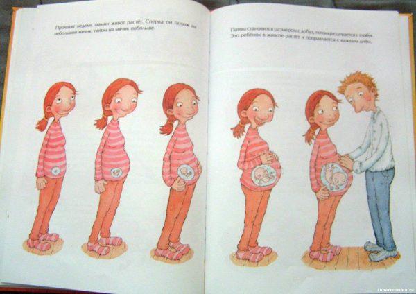 Иллюстрация в книге: как растёт живот у мамы