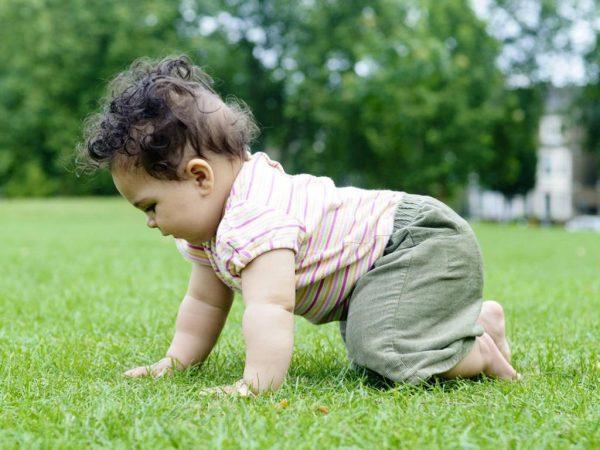 Кудрявый ребёнок стоит на четвереньках на травке