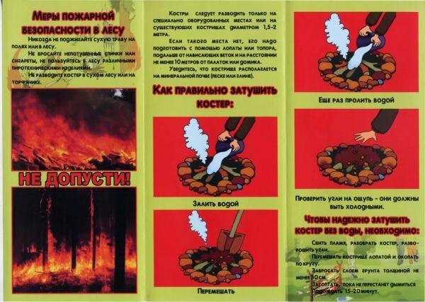 Информация по теме «Пожарная безопасность в лесу»