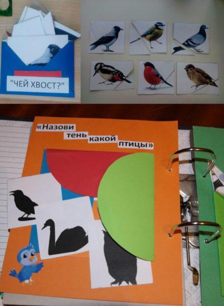 Дидактические игры «Чей хвост?» , «Назови тень какой птицы»
