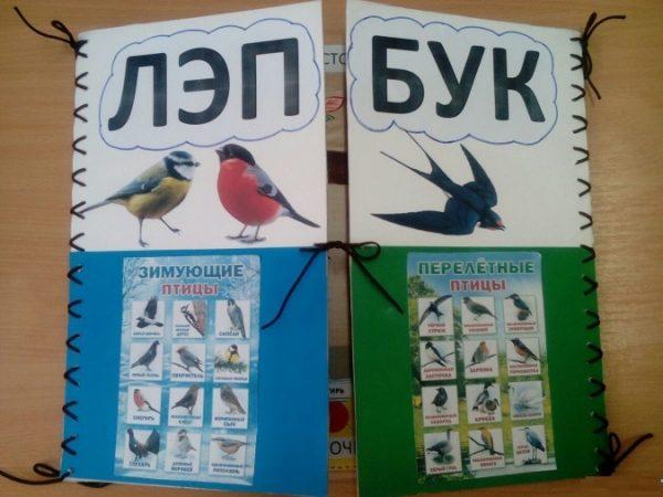 На обложке изображены зимующие и перелётные птицы
